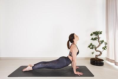 animal yoga poses